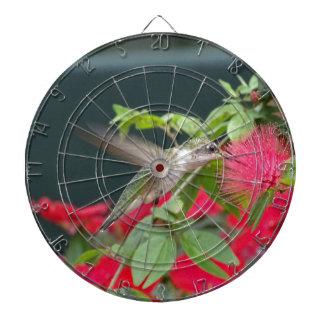 Hummingbird Dartboard With Darts