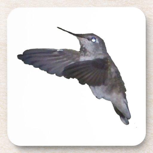 Hummingbird Drink Coaster