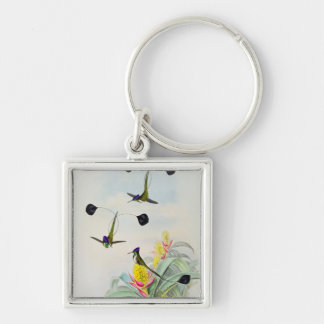 Hummingbird, engraved by Walter and Cohn Key Chains