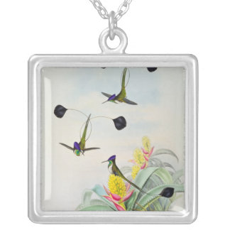 Hummingbird, engraved by Walter and Cohn Silver Plated Necklace