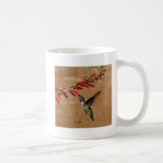 Hummingbird feeding at the garden mug