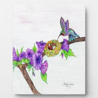 Hummingbird Feeding Young Plaques