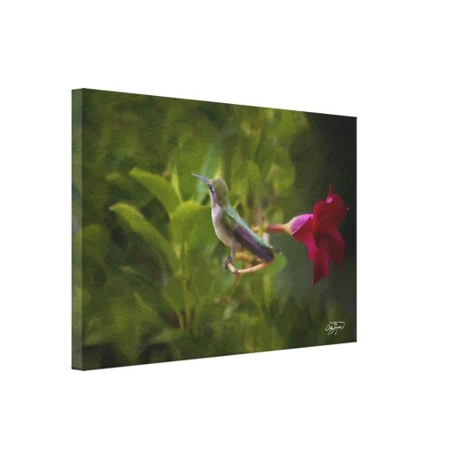 Hummingbird Floral Art Print and Canvas Stretched Canvas Prints