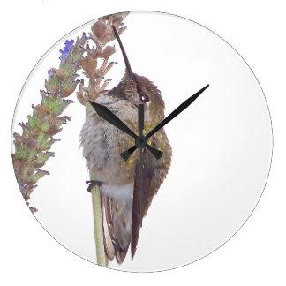 Hummingbird Floral Flower Bird Animal Wall Clock