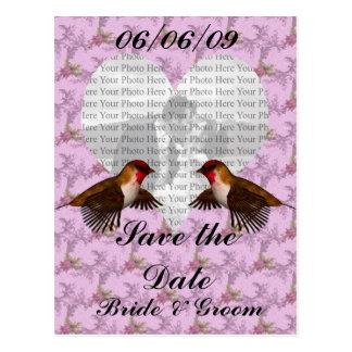 Hummingbird Floral Purple Colored Postcard