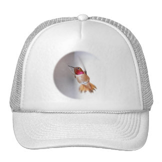 Hummingbird Flying Photo Mesh Hats