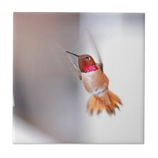 Hummingbird Flying Photo Tile