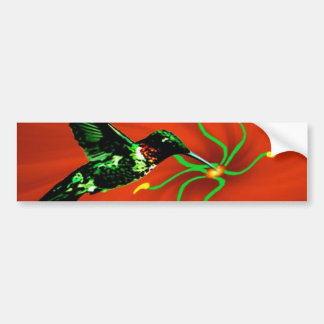 Hummingbird from Heaven Bumper Sticker