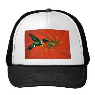 Hummingbird from Heaven Hat
