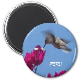 Hummingbird from Peru Magnet