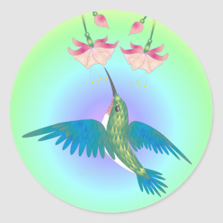 HUMMINGBIRD & FUCHSIA by SHARON SHARPE Classic Round Sticker