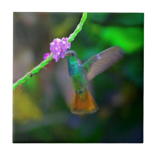 Hummingbird Garden Ceramic Tile