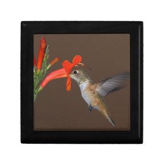 HUMMINGBIRD GIFT BOX
