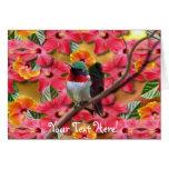 Hummingbird Haven Birthday Card