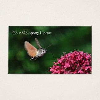 Hummingbird hawk-moth business card
