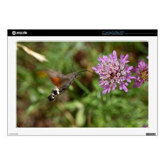 "Hummingbird hawk-moth (Macroglossum stellatarum) 17"" Laptop Decals"