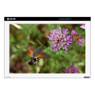 "Hummingbird hawk-moth (Macroglossum stellatarum) Decal For 17"" Laptop"