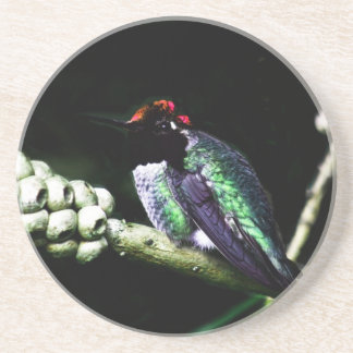 Hummingbird Homecoming Collection Sandstone Coaster