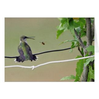 Hummingbird & Honey Bee Greeting Card