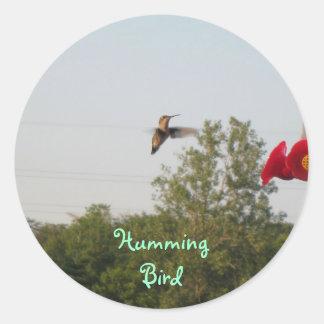 hummingbird, Humming Bird Classic Round Sticker
