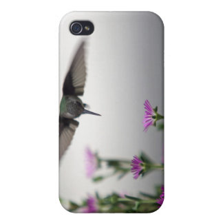 Hummingbird i iPhone 4 case