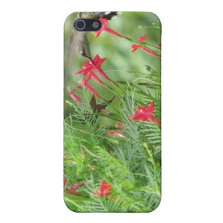 Hummingbird in Cypress Vine Case For iPhone SE/5/5s