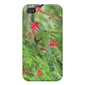Hummingbird in Cypress Vine iPhone 4 Case