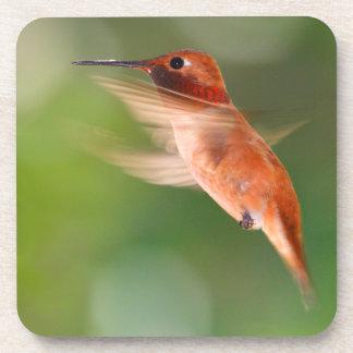 Hummingbird in Flight Beverage Coaster