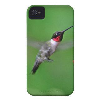 Hummingbird in flight iPhone 4 covers