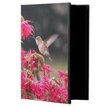 Hummingbird in Flight Photo iPad Air Cover