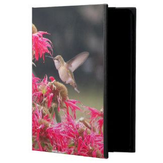 Hummingbird in Flight Photo iPad Air Cover