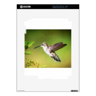 Hummingbird in flight skins for iPad 2