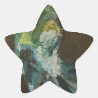 """""""Hummingbird in flight"""" Star Sticker"""