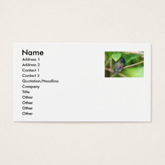 Hummingbird in Jungle Photo Business Card