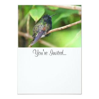 "Hummingbird in Jungle Photo 5"" X 7"" Invitation Card"