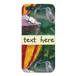 Hummingbird in Motion Covers For iPhone 5