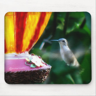 Hummingbird in Motion Mouse Pad
