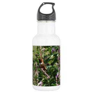 Hummingbird in Purple 18oz Water Bottle