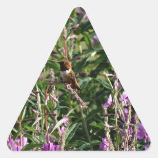 Hummingbird in Purple Triangle Sticker