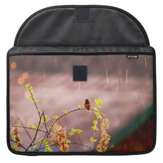 Hummingbird in Rain Shower MacBook Pro Sleeves