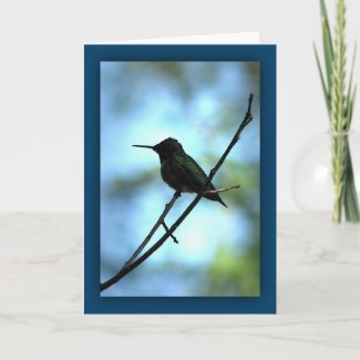 Hummingbird in Silhouette card