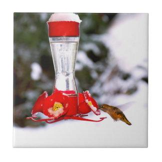 Hummingbird in Snow in Winter Ceramic Tile