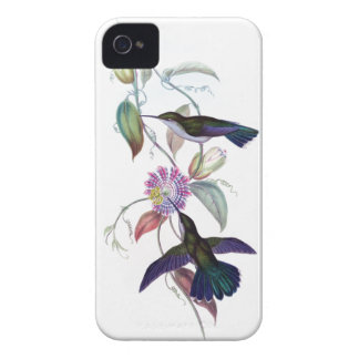HUMMINGBIRD iPhone 4 case