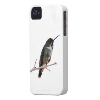 Hummingbird iPhone case Case-Mate iPhone 4 Case