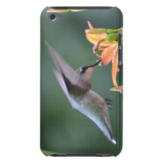 Hummingbird iPod Touch Case