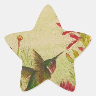 hummingbird.jpg pegatina en forma de estrella