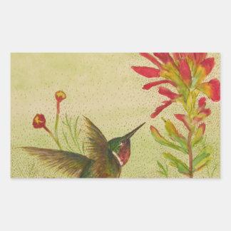 hummingbird.jpg pegatina rectangular