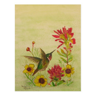 hummingbird.jpg postcard