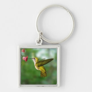 hummingbird key ring Silver-Colored square keychain