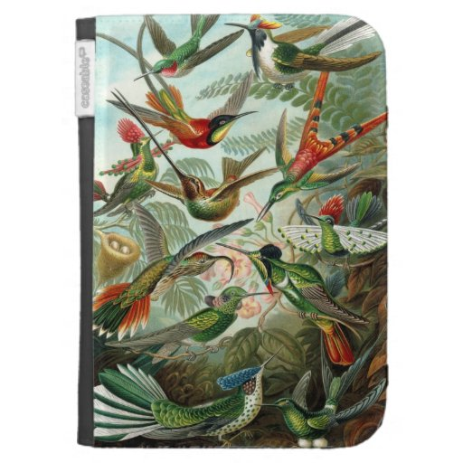 Hummingbird Kindle 3 Cases